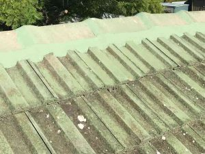 Green Roof Restoration Adelaide